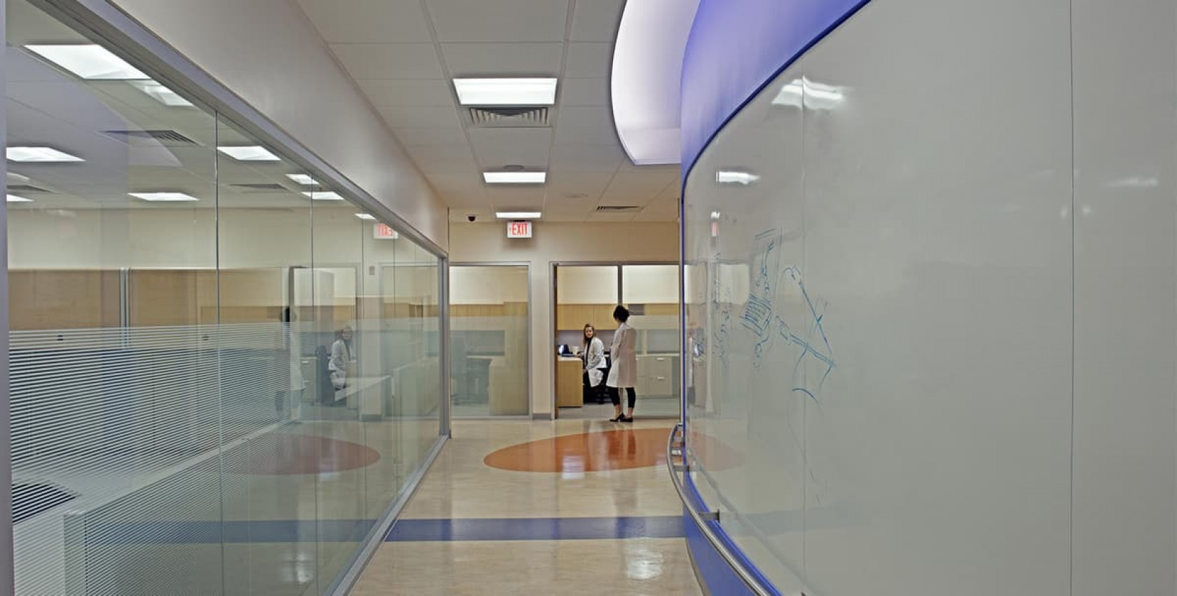 CNMC Sheikh Zayed, Healthcare